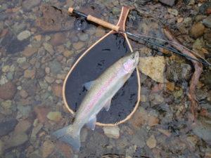 rainbow trout net fly rod